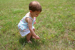 Baby Girl and Weeds. Cute baby girl fascinated by weeds in a field. Shot with a Canon 20D Royalty Free Stock Photo