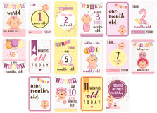 Baby Girl Weeks and Months Card Royalty Free Stock Images