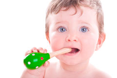 Baby Girl With Shaker Music Instrument. Stock Image