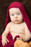 Baby girl wrapped in a red scarf Royalty Free Stock Image