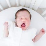 Baby girl yawning Royalty Free Stock Image