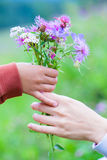 Baby gives mom a bouquet of wildflowers. Hands child and mother with flowers on bright background Stock Images