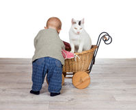 Baby giving a cat a ride in a pram Stock Image