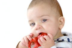 Baby gnawing red toy Royalty Free Stock Photo
