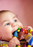 Baby are gnawing a toy Royalty Free Stock Image