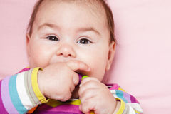 Baby are gnawing a toy Royalty Free Stock Photography