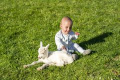 Baby and goatling on spring play together Royalty Free Stock Images