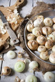 Baby golden onions with peel and some peeled on vintage rustic background with burlap and knife Royalty Free Stock Images