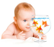 Baby and  goldfishs Royalty Free Stock Images