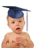 Baby graduate Stock Photography