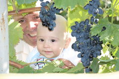 Baby, grandfather and grapes Royalty Free Stock Photos