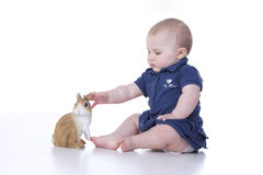 Baby grasps. She extends her arm to grab the rabbit Royalty Free Stock Photography