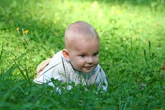 Baby in grass. Baby child crawling in the grass Stock Photo