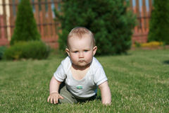 Baby on grass. Little baby boy crawling on the grass. Baby learning to crawl Royalty Free Stock Photography