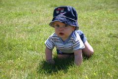 Baby in the Grass 2 Royalty Free Stock Image