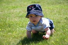 Baby in the Grass Stock Image