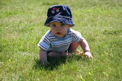 Baby in the Grass 3 Stock Image