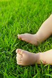 Baby on grass. Little baby feet on fresh green grass outdoors Royalty Free Stock Photos