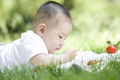 A baby on grass. A Chines baby on grass is trying eating Stock Photography