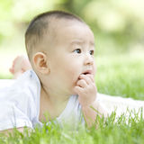 A baby on grass. A Chinese baby is looking forwards and eating finger on grass outdoor Stock Images