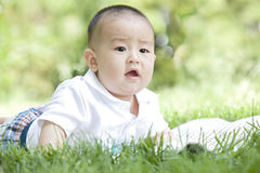 A baby on grass. A Chinese baby is on grass outdoor Royalty Free Stock Photography