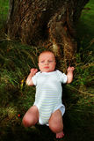 Baby in grass near tree Stock Photos