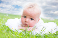 Baby in the grass Stock Photo