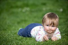 Baby on the grass Stock Images