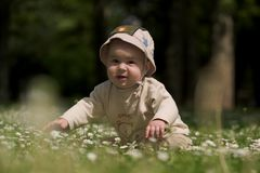 Baby on the green field 10. A baby is sitting on a flowery meadow, experiencing the surrounding nature by touching the flowers and harvesting the grass. This is Stock Photography