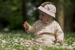 Baby on the green field 8. A baby is sitting on a flowery meadow, experiencing the surrounding nature by touching the flowers and harvesting the grass. This is Royalty Free Stock Photos