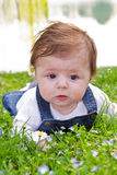 Baby on green grass Royalty Free Stock Image