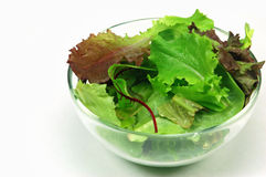 Baby greens. Fresh baby salad greens in bowl isolated on white background Stock Photos