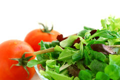 Baby greens and tomatoes Stock Photos