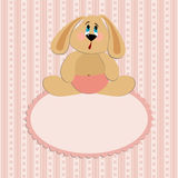 Baby greetings card. With sitting rabbit Royalty Free Stock Image
