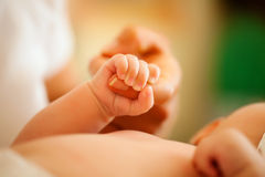 Baby gripping hand of mother Royalty Free Stock Image