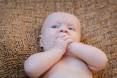 Baby-Händchenhalten, das auf Decke legt Stockfotografie