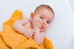 Baby habit. Funny baby sucking on finger while laying in bed Stock Photos