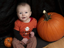 Baby on halloween with pumpkins Royalty Free Stock Image