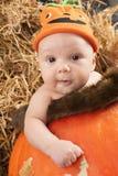 Baby halooween photoshoot Lizenzfreies Stockbild