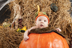 Baby halooween photoshoot Royalty Free Stock Photo