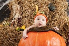 Baby halooween photoshoot Royalty Free Stock Photo
