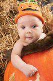 Baby in the pumpkin Royalty Free Stock Image