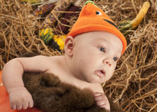 Baby halooween photoshoot Stock Images
