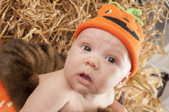 Baby halooween photoshoot Royalty Free Stock Photography