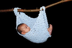 Baby in hammock. Baby in comfy blue hammock blanket hanging from a branch Royalty Free Stock Photography