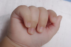 Baby hand. Hand of  new born baby closeup isolated on white background Royalty Free Stock Photography