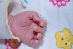 Baby Hand Royalty Free Stock Images