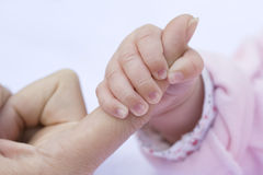 Baby Hand Royalty Free Stock Photo