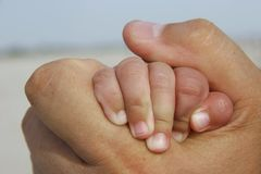 Baby hand in adult hand. Close up of baby hand in adult hand Stock Photography