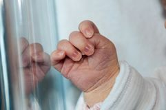 Baby hand in the bed. Newborn baby hand, in his bed Royalty Free Stock Photography